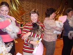 В выставках кошек АПКЛК принимают участие только заводчики питомников кошек PCA